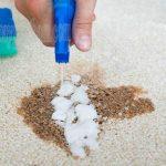 Cách giặt thảm khô – sự lựa chọn tuyệt vời cho giặt thảm gia đình