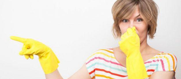 Khử mùi sơn hiệu quả bằng phương pháp tự nhiên